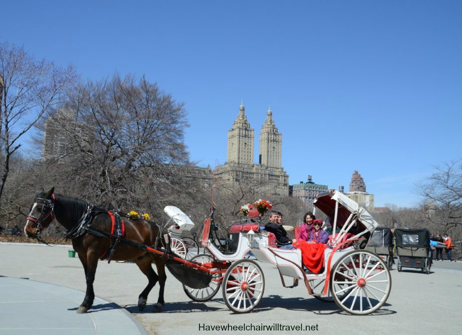 central park part one carriage ride have wheelchair will travel. Black Bedroom Furniture Sets. Home Design Ideas
